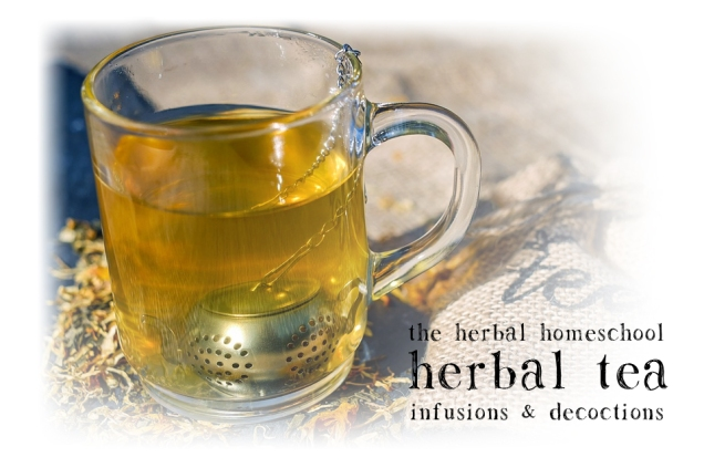 herbal-tea-infusions-and-decoctions