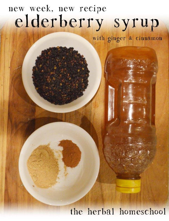 elderberry-syrup-recipe