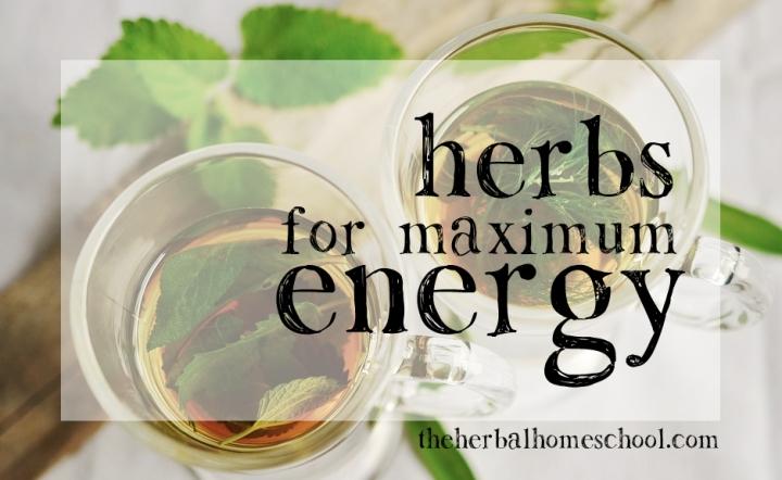Herbs for MaximumEnergy