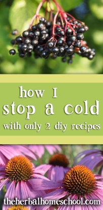 stop a cold