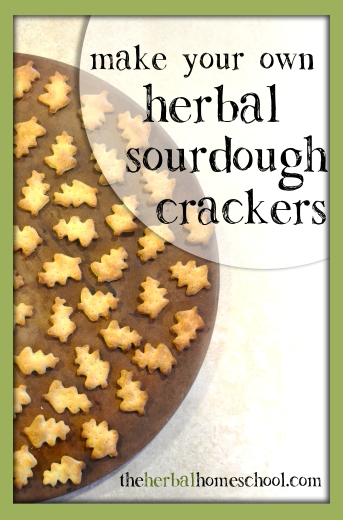 sourdoughcrackers