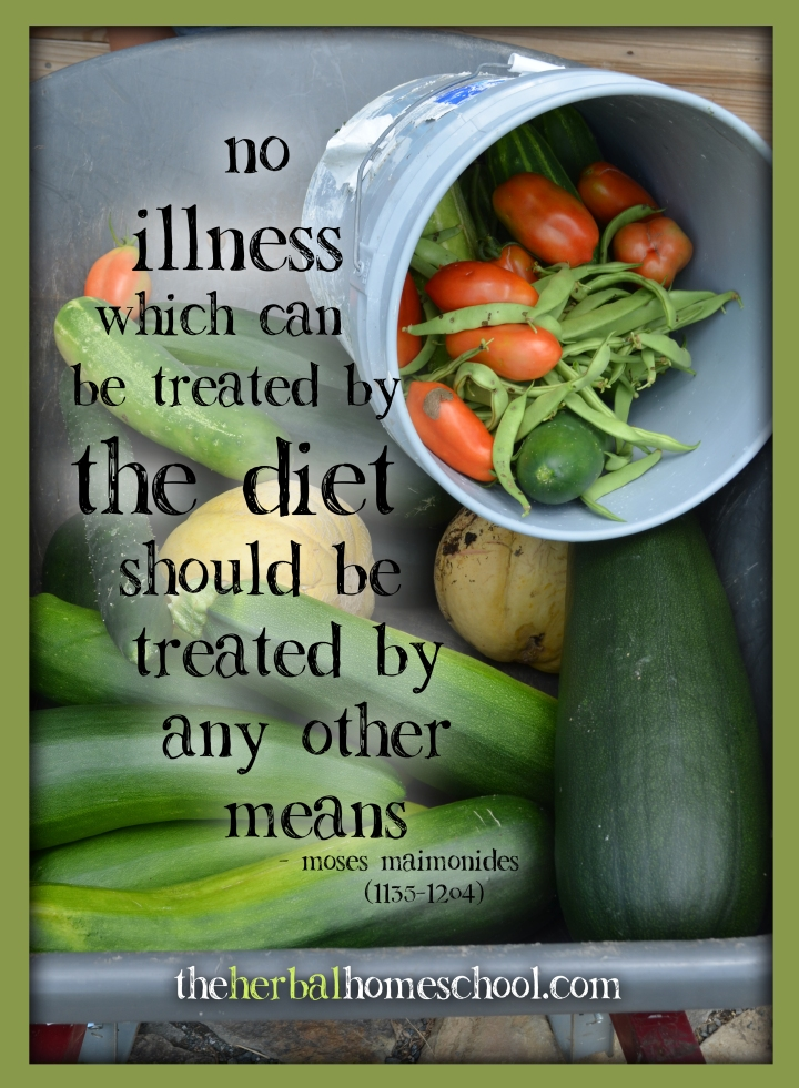 no illness which can be treated by the diet should be treated by any other means