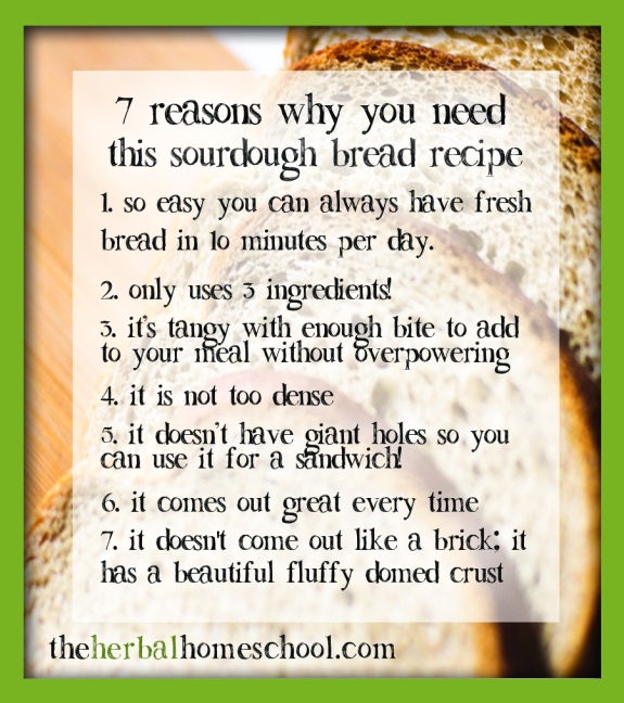 7 Reasons why you need to try sourdough bread