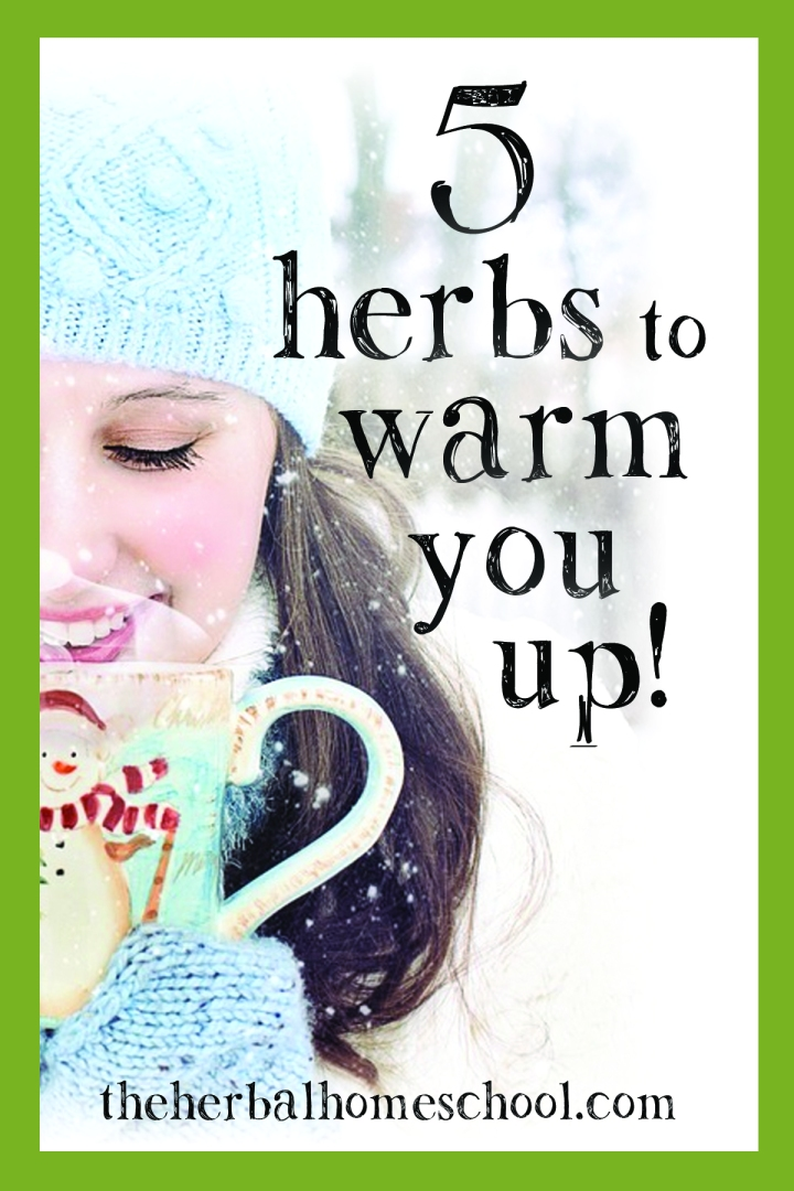 5 Herbs to Warm You Up