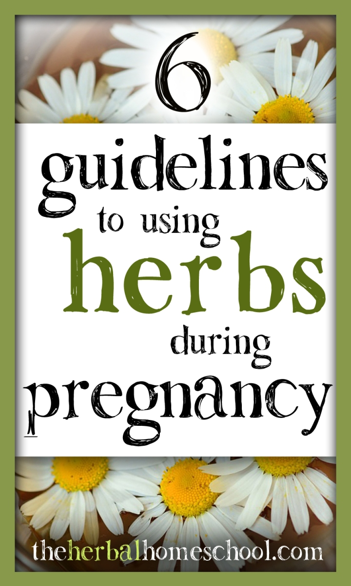 6 Guidelines to Using Herbs During Pregnancy